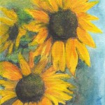 Sunflowers_op